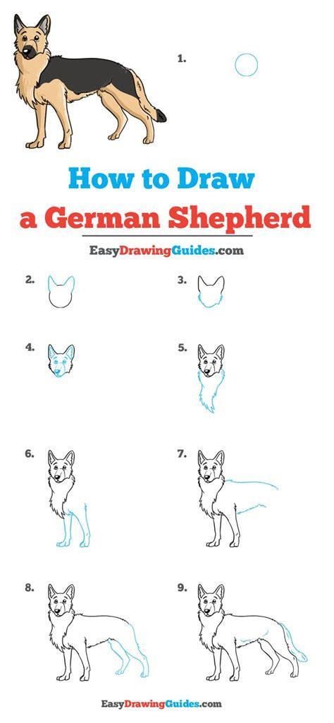 draw  german shepherd    images