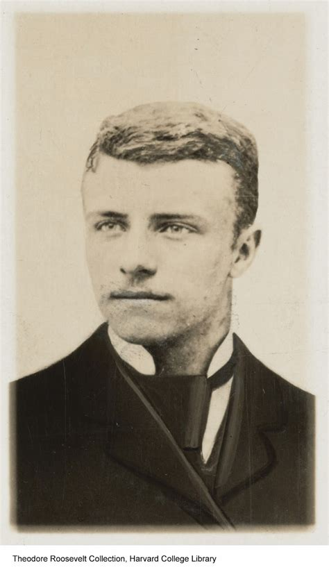 Narcissus 1912 Renovation Project: Theodore Roosevelt ...