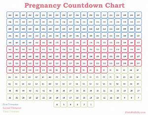 Printable pregnancy countdown chart for Countdown chart template