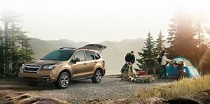 Concession Subaru : ext rieur forester 2017 subaru ste agathe ~ Gottalentnigeria.com Avis de Voitures