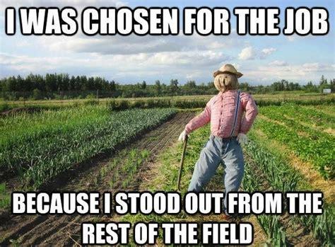 Farmer Memes - corn field farmer meme the best of slapcaption com pinterest