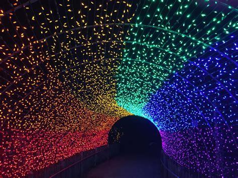 lights cincinnati zoo christmas festival garden pnc ohio botanical events displays pride cincinnatizoo vote courtesy 10best votes needs usa today
