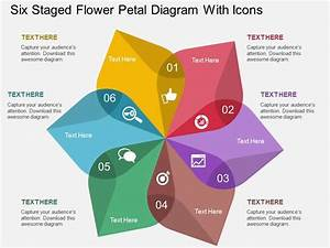 Bq Six Staged Flower Petal Diagram With Icons Flat