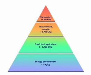 The Volume  Profit Pyramid Value For Marine Biotechnology
