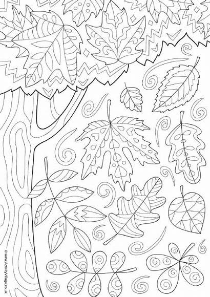 Colouring Autumn Pages Doodle Sheets Adults Coloring