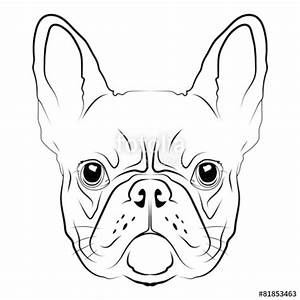 """French Bulldog head logo or icon in white."" Stock image ..."