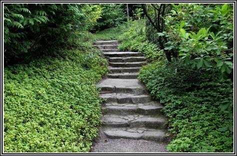 Japanischer Garten Berlin Eintritt  Garten  House Und