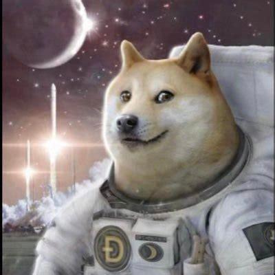 Doge Coin Meme - Dogecoin Original Meme Dog / Dogecoin ...
