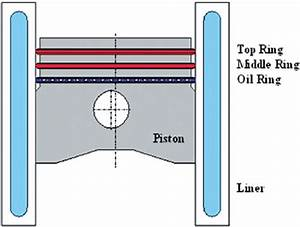 Schematic Of The Piston Rings Assembly