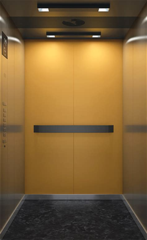elevator vertical mobility gathers momentum