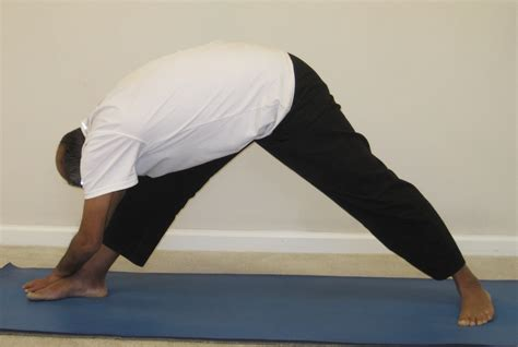 Prasarita Padottanasana (wide-legged Standing Forward Bend