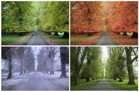 The Four Seasons  What Causes Seasons?