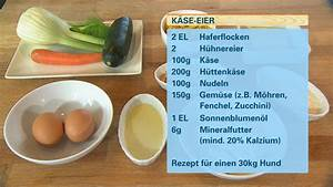Nudeln Für Hunde : hundkatzemaus vegetarische ern hrung f r hunde ~ Watch28wear.com Haus und Dekorationen