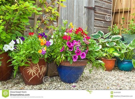 Topfpflanzen Für Den Garten by Garten Versch 252 Ttet Versteckt Durch Topfpflanzen Stockfoto