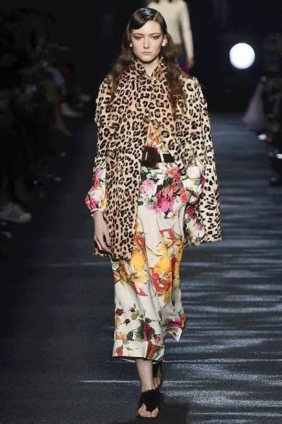 Coat Fall Vogue Runway Winter Trends Blumarine