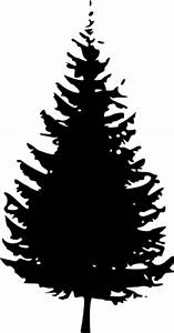Vector Clipart Pine Tree - Pencil And In Color Vector ...