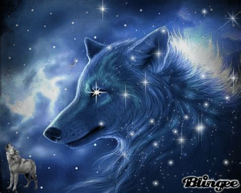 Blue Cool Wolf Wallpaper by Cool Blue Wolf Picture 126739537 Blingee