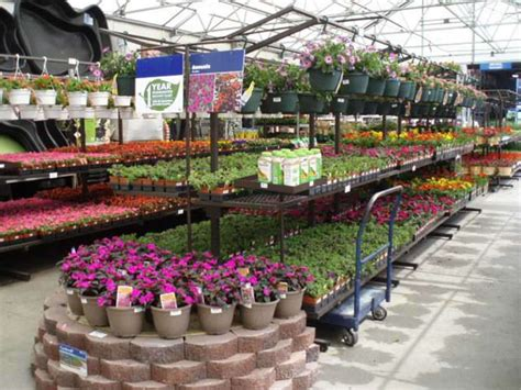 lowes garden center lowe s announces commitment to phase out neonicotinoids by