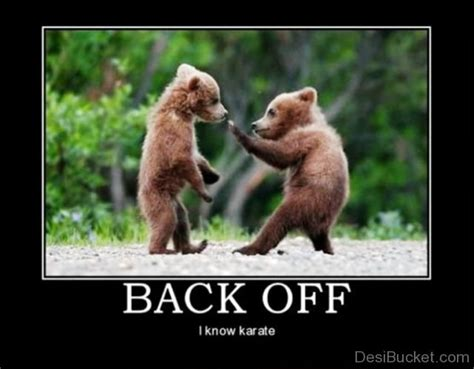 Back Off Meme - back off i know karate desibucket com