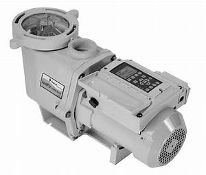 5 Best Pool Pump Reviews Just For You