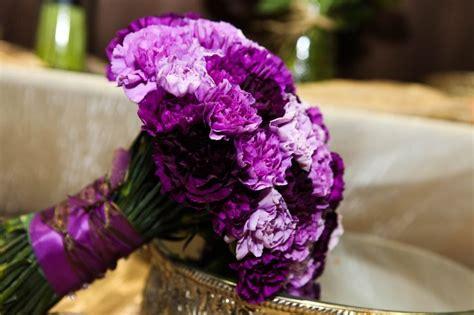 1000+ Ideas About Purple Carnations On Pinterest