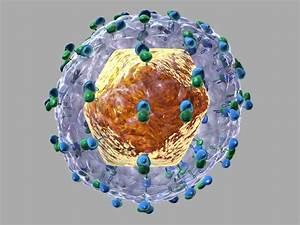 Hepatitis C Sym... Hepatitis C