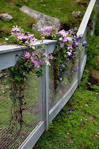 61 best Small Garden Fence Ideas images on Pinterest ...