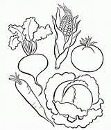 Coloring Vegetables Vegetable Preschool Colouring Printable Nutrition Adult Kindergarten Popular Coloringhome sketch template