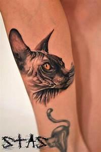 Amazing Thigh Designs 35 Gorgeous Sphynx Cat Designs Amazing Ideas