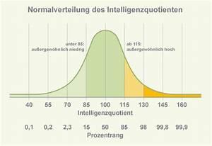 Alter Kind Berechnen : intelligenztest f r kinder iq test f r kinder ~ Themetempest.com Abrechnung