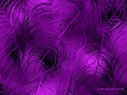 Purple Background Pattern Backgrounds Wallpapers Designs Soft