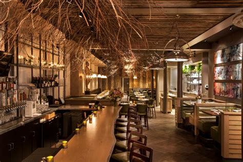 nature inspired restaurant  tree branch ceiling