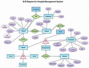 hospital management system project for final year With pet shop management system project documentation