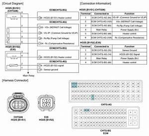 Kia Optima  Heated Oxygen Sensor  Ho2s   Schematic