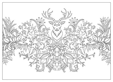 Enchanted Forest Coloring Book Pdf Download Fun