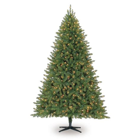 pencil trees christmas by ashland 7 5 ft pre lit green hartford pine artificial tree clear lights by ashland