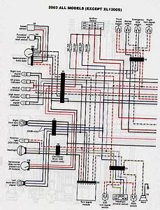 Rigid Evo Wiring Diagram - The Sportster And Buell Motorcycle Forum