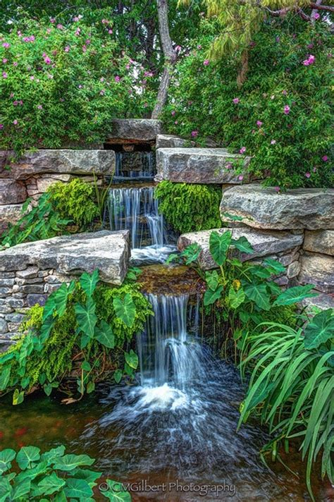 Japanese Garden Fort Worth Tx by 25 Best Images About Botanical Gardens On Pinterest