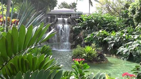 jardin botanique deshaies full hd guadeloupe ex