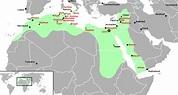 Islamic Art and Architecture: The Fatimid Islamic Caliphate