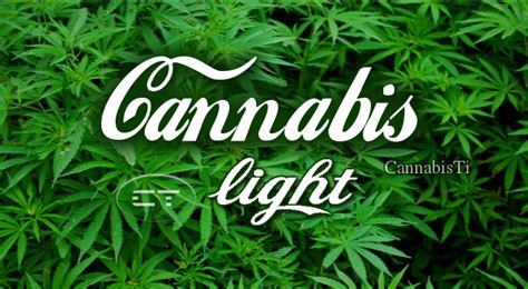 but canapé lit la cannabis light 232 legale ma cannabisti