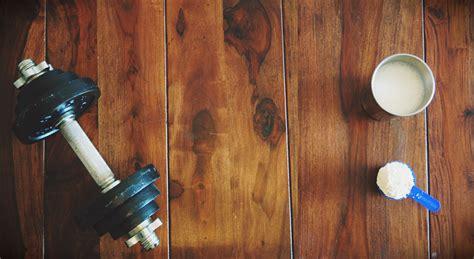 eiweissshake wie im fitnessstudio eiweiss mixer