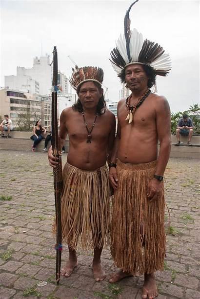 Indigenous Land Population Brazil Owners Latina Its