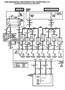 Injector Wiring Harness Diagram