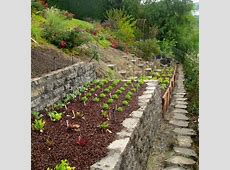27 best images about Steep Garden Ideas on Pinterest