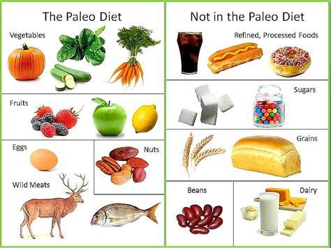 cuisine paleo the paleo diet positivemed