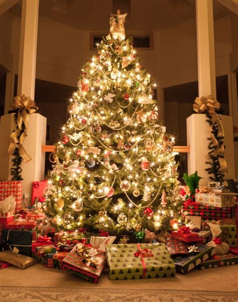 How Much To Spend On Christmas Gifts And What Do Women. Diy Christmas Decorations With Christmas Tree Branches. Handmade Christmas Decorations Nz. Decorate White Christmas Tree Pictures. Christmas Decorations Meme. John Lewis London Christmas Decorations. Homemade Photo Christmas Decorations. Wholesale Christmas Gifts And Decorations. When Do Disney Christmas Decorations Go Up 2014