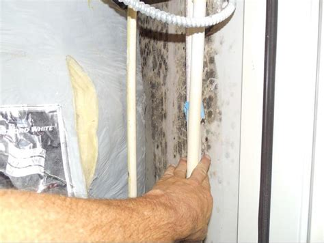 water heater mold in utility closet how bad does it