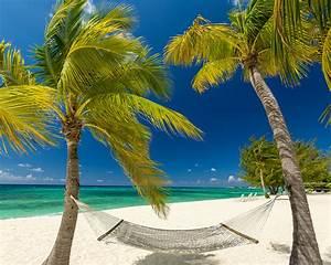 Bilder Von Palmen : bilder von h ngematte grand cayman strand natur palmen 1280x1024 ~ Frokenaadalensverden.com Haus und Dekorationen