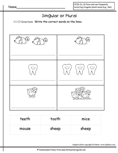 irregular plural nouns worksheet school reading plural